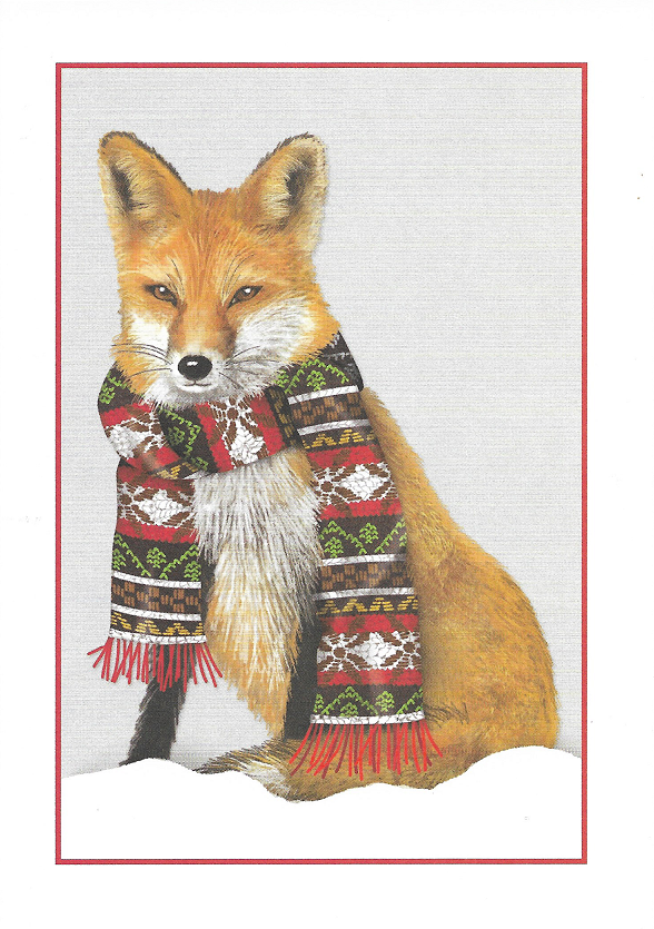 Holiday Fox Boxed Cards
