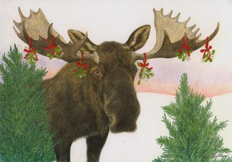 Mistletoe Moose Boxed Holiday Cards