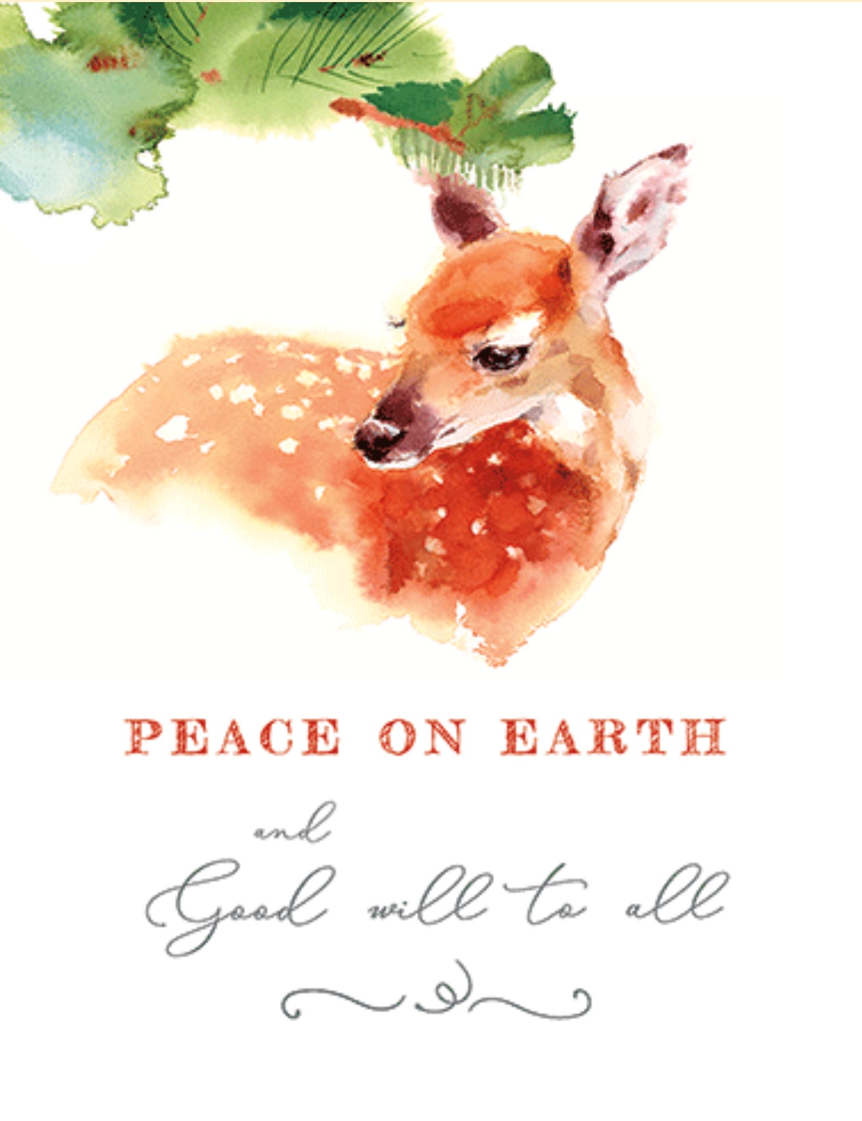 Peace Boxed Cards