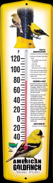 Thermometer Indoor/Outdoor