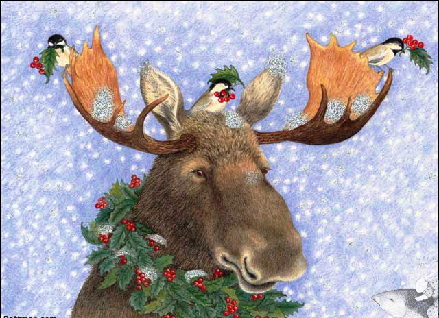 Holly Moose Boxed Christmas Cards