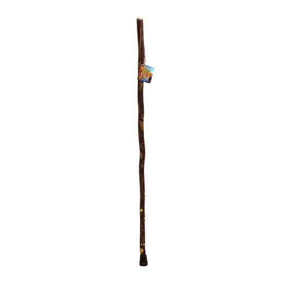 Kid's Walking Stick 41