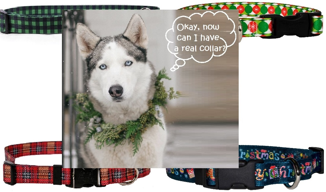 Holiday Dog Collars - Large