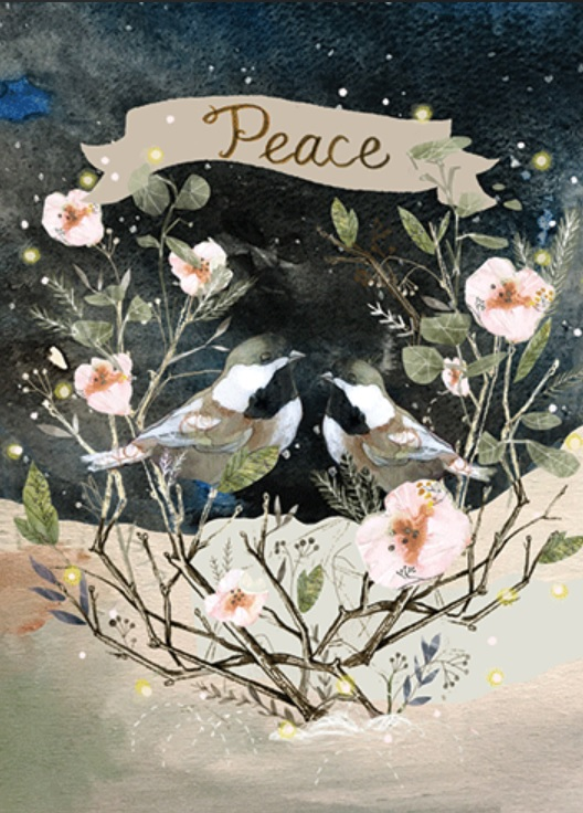 Peace Birds Boxed Cards
