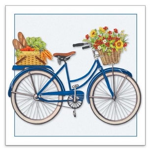 Blue Bicycle Gift Enclosure
