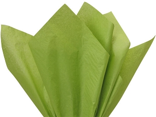 Tissue Paper Oasis Green