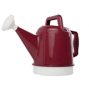 Deluxe 2.5 Gallon Watering Can