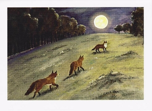 Foxes Moonlight