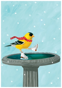 Goldfinch Skates Card