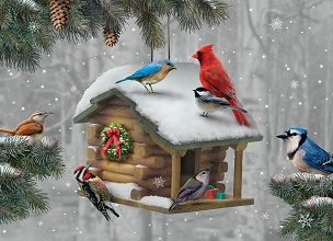 Log Cabin Birdhouse Boxed Cards