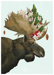 Moose Bouquet Boxed Cards