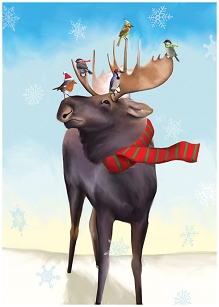 Moose Taxi  Boxed Holiday Card