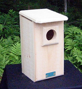 Saw-Whet or Screech Owl House