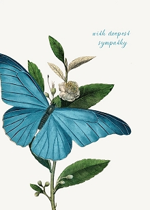 With Deepest Sympathy Butterfly