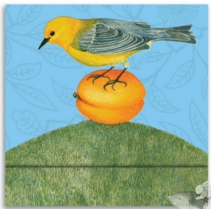 Matchbook Notebook - Warbler & Apricot
