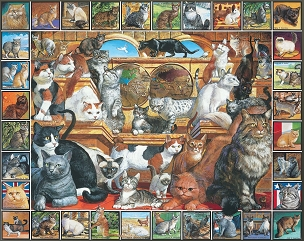World of Cats 1000  Pc. Jigsaw Puzzle