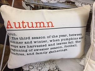 Autumn Definition Pillow