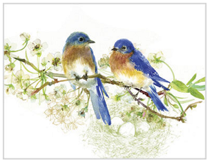 BLUE BIRDS NOTE CARDS