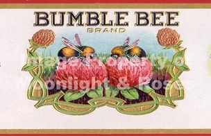 Bumble Bee Brand Card