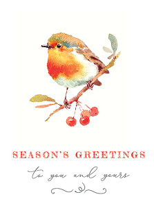 Winter Bird Boxed Cards