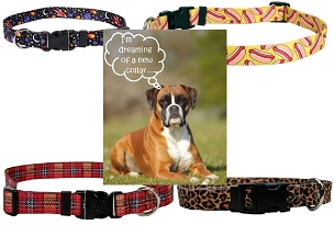 Dog Collars - Large