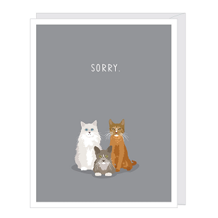 Sorry Cats Pet Sympathy Card