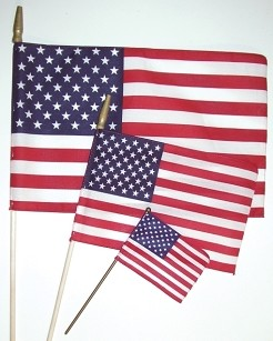 U.S. Spearhead Flag  -  Small